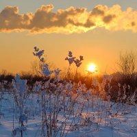 Прощание с солнцем. :: Наталья Юрова