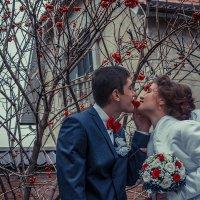 Калиновый поцелуй :: Anna Dontsova