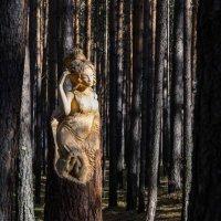однажды в лесу :: наталья