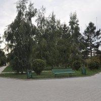 """"""" Солнечный :: Tatyana Kuchina"""