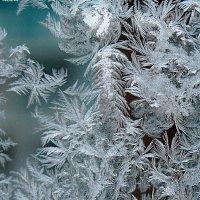Рисует мороз... :: Николай Масляев
