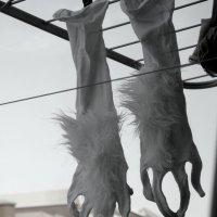 Перчатки :: annet Sagitova
