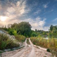 Утро в Вольском районе :: Yulia Demina