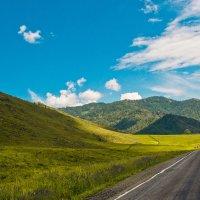 Дорога по Алтаю :: юрий Амосов