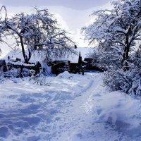 зимний день :: мирон щудло