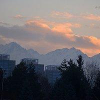 Зимой рано темнеет ... :: Anna Gornostayeva