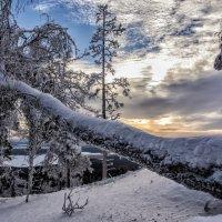 Russian Winter :: Dmitry Ozersky