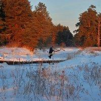 Зимнее утро :: Валерий Толмачев