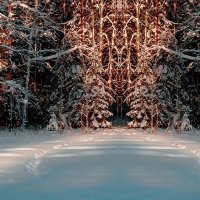 Закат в лесу. :: Валерий Молоток