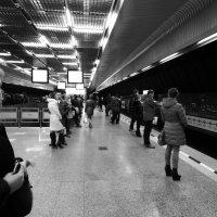 В ожидании поезда :: Екатерина Харитонова