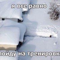 Курск засыпало снегом :: Galina Belugina