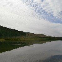 Красивая река Хилок.Ты неси меня река... :: Елена Фалилеева-Диомидова