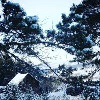Зимний домик :: Елена Фалилеева-Диомидова