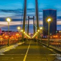 Красноярск. Пешеходный мост :: Андрей Поляков