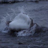 Зима на Балтийском море. :: Максим Воробьев