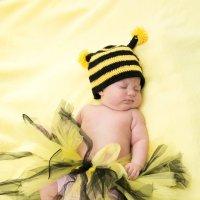 пчелка :: наталья