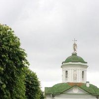 Храм Спаса Всемилостивого :: kabanchik.nk
