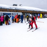 Лыжники. :: Геннадий Оробей