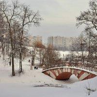 Зима в Царицыно :: Леонид Иванчук