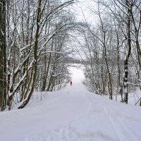 Московская зима :: Леонид Иванчук