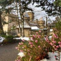 Шильонский замок в Монтре :: Ирина Егорова