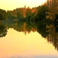 Золотое зеркало.. :: Ирина Сивовол