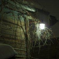 Ночная идиллия :: Пётр Сухов