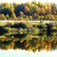 осень :: Леонид Натапов
