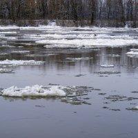 Река Десна :: Александр Скамо