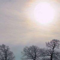 Остывает солнце на морозе... :: Лесо-Вед (Баранов)