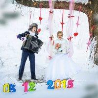 Свадьба 05.12.2015 Дмитрий и Анна :: Юрий Лобачев