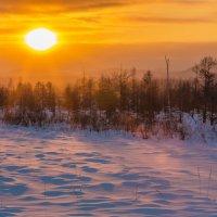 Таежный закат :: Дмитрий Гольнев