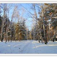 """Картина . """" В лесу"""" . :: Мила Бовкун"""