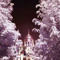 Дорога к Храму :: Юрий