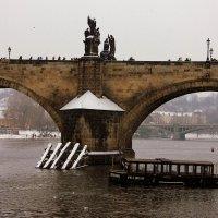 на Карловом мосту :: Ольга