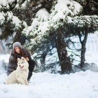 Фотосессии с Хаски :: Ольга Дворянкина