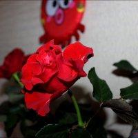 Королева цветов :: Татьяна Пальчикова