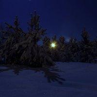 Лунный свет. :: Андрей Вычегодский