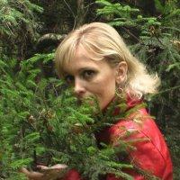 Запах леса. :: Подруга Подруга