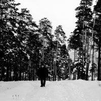 Черно белое фото :: Сергей Алексеев