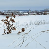 Когда зимой природа замирает... :: Владимир Хиль