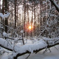 Зимний вечер :: Андрей Снегерёв
