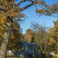 Мраморный мостик в Пушкине :: Valerii Ivanov