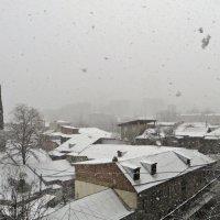 В Тбилиси снег - первый :: Наталья Джикидзе (Берёзина)