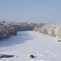 Разукрасил мороз... :: Андрей Студеникин
