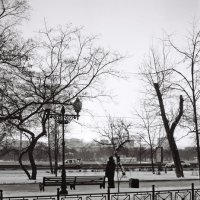 Утренний сквер :: Саша Суфранс