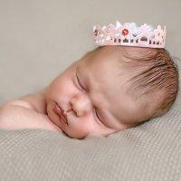 Принцесса Аделия :: Виктория Дубровская
