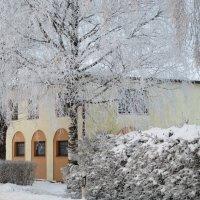 В  царстве  зимнем... :: Mariya laimite