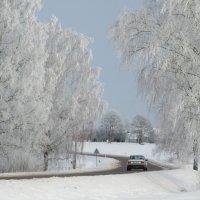 Зимняя дорога :: Mariya laimite