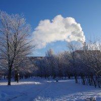 Мороз и солнце :: Марина Сорокина